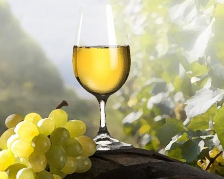 Rượu vang Organic - Rượu vang sạch. Bạn đã từng nghe đến?